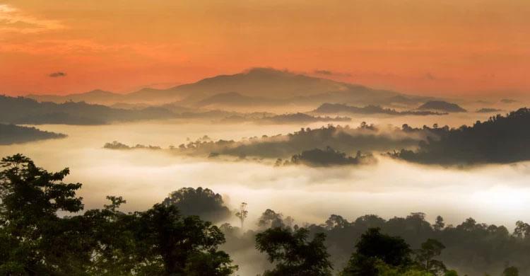 Danum-Valley-Sabah